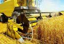 Rusya, başta Türkiye'ye olmak üzere 3.77 milyon ton tahıl ihraç etti