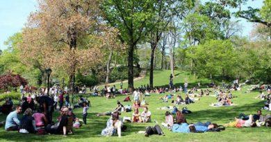 Kazan World Urban Parks Kongresine hazırlanıyor