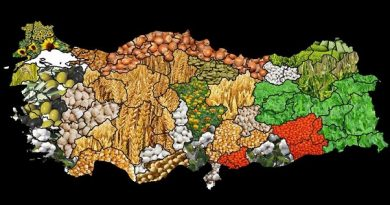 Rusya Tarım Politikaları Başkanı Melniçenko: Türkiye, ürünlerini Rusya'da yeterince tanıtamıyor!