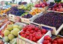 Yaş meyve sebze ihracatında öncelikli pazar Rusya